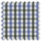 Pinpoint, Blue and Green Checks