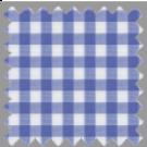 Poplin, Blue Checks